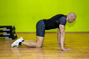 Bird Dog Inizio - personal Trainer Taranto - Lanza Personal Trainer - Fitness