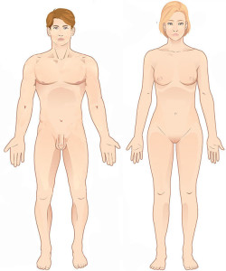 Posizione Anatomica|Personal Trainer Taranto|Lanza Personal Trainer