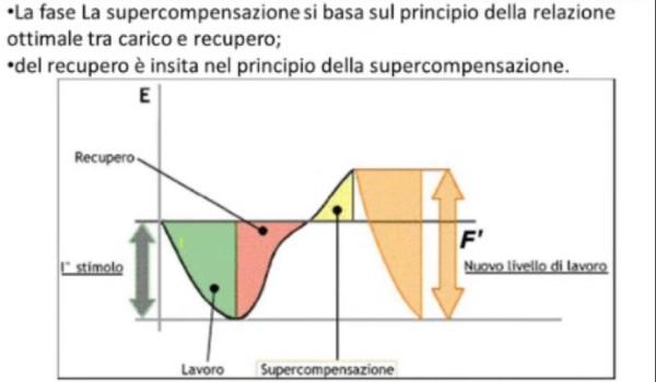 Supercompensazione|Personal Trainer Taranto| Lanza Il personal Trainer